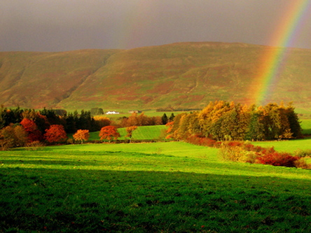 rainbow-photography.jpg